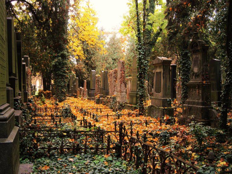 Židovský hřbitov – Zajímavé místo v Brně
