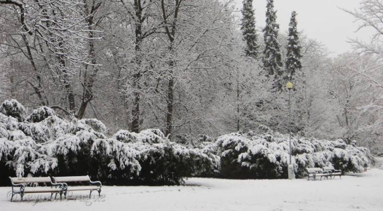 Brno pod sněhem – galerie